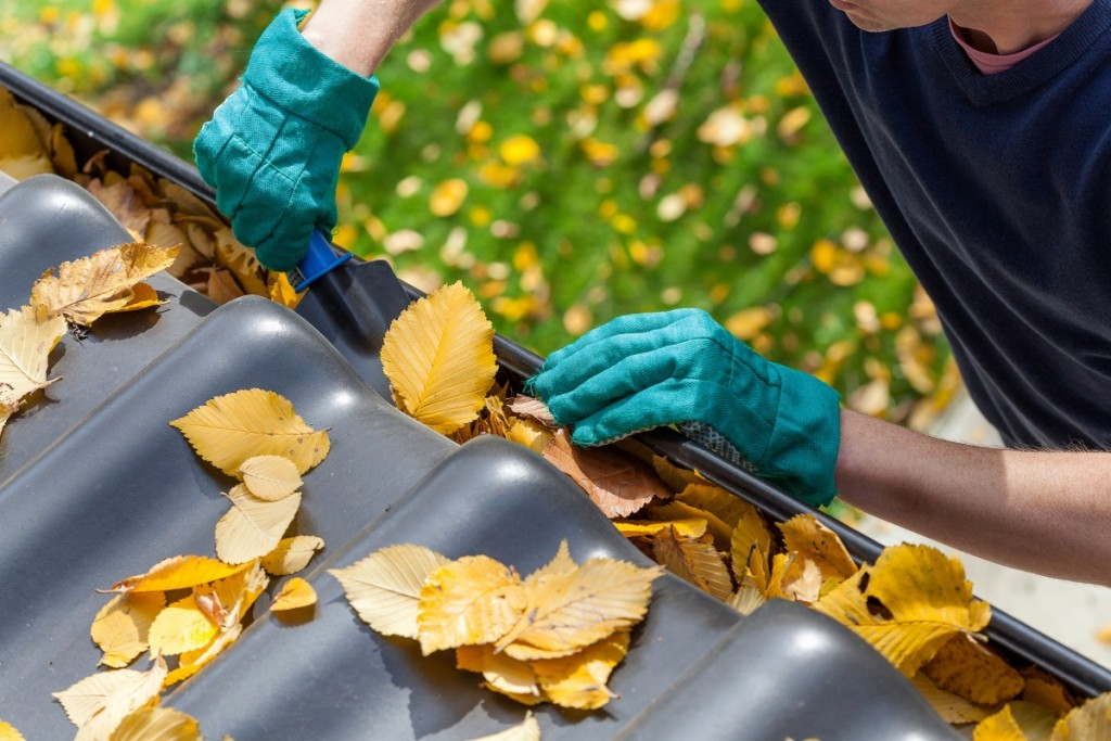 gutters being cleaned by hand to remove leaves